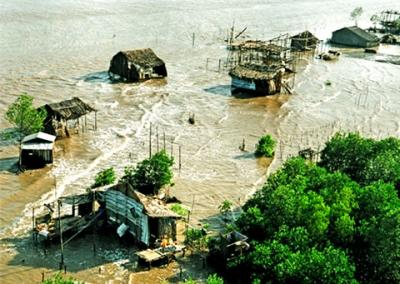 Tác động của biến đổi khí hậu đối với sản xuất nông nghiệp ở đồng bằng sông Cửu Long